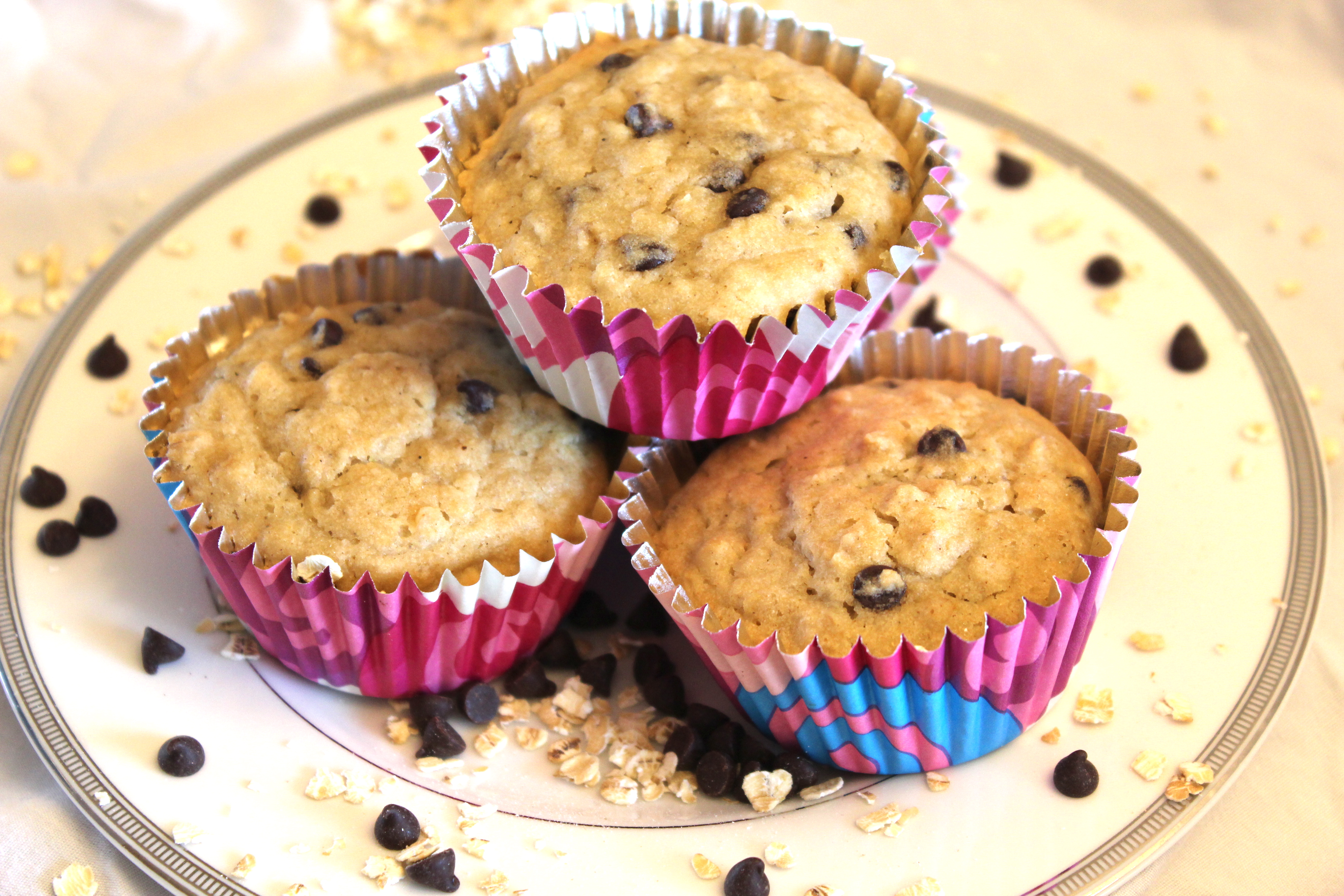 Gluten free oatmeal chocolate chip muffins – The Edible Cure
